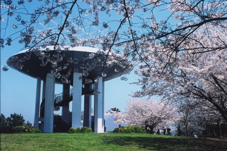 野島公園展望臺