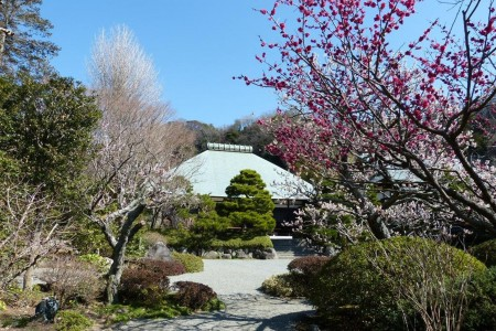 Le temple Jōmyō-ji