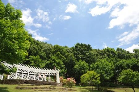 Công viên rừng Nanasawa