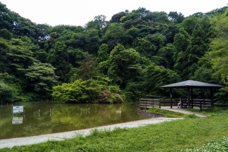 Fudou-ike Pond