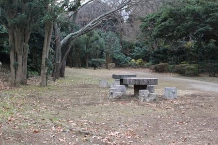 片瀬山公園