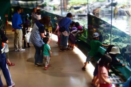 Bảo tàng Khoa học Sagamigawa Fureai