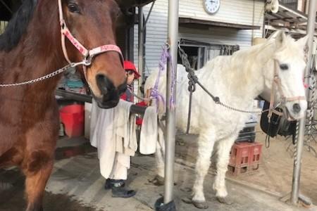 Câu lạc bộ cưỡi ngựa Oi Matsuda