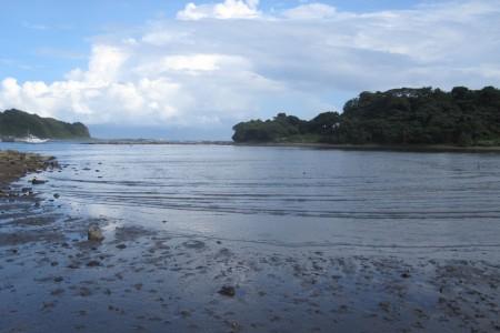 La baie Ena
