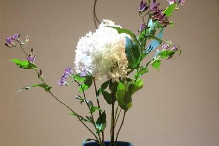 Ohana DE Ohanashi    Japanese flower arrangement    Sogetsu-ryu Ujebana Studio