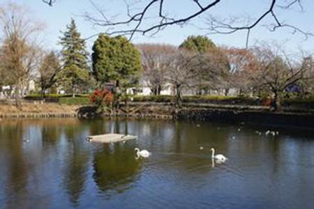 Le parc Kanuma