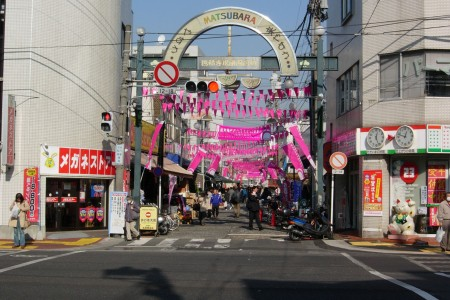"Head over to ""Hama no Ameyoko"", an energetic shopping street with lovely seasonal flora"