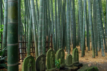 Kanazawa Kaido (Wander-Pfad)