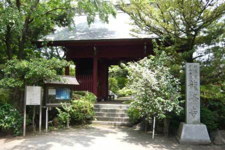 Ryuhoji (Wooden Senju-kannon)