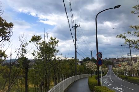 Kisawa Hakkei(Megummiga oka hill)