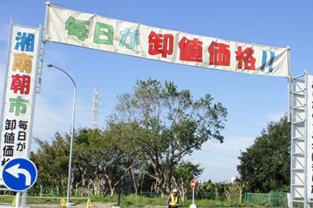 湘南藤澤地方卸貨市場