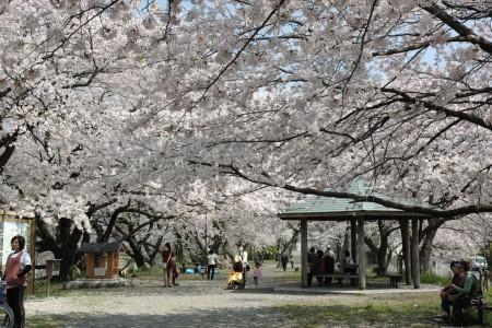 Bunmei-zutsumi
