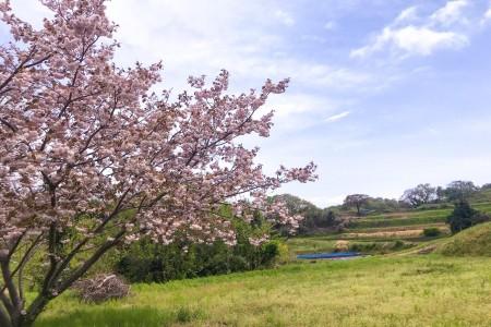 Kisawa Hakkei (Yurugino oka Hügel)