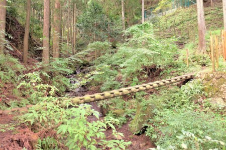 Kujyukukyoku (Ninety-nine bends) Hiking Course