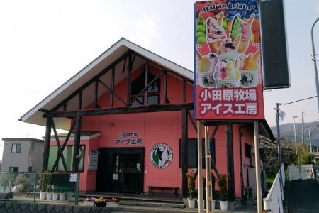 Odawara Farm Ice Cream Factory