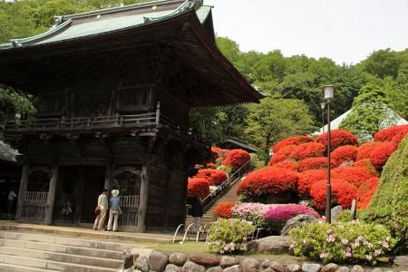 Le temple Togaku-in (Tsutsuji)