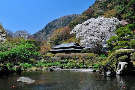 Nhà trọ Yoshiike (Nhà trọ kiểu Nhật)