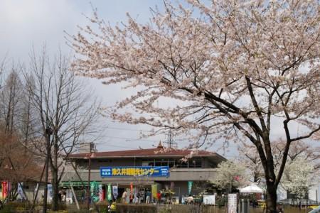 津久井湖觀光中心