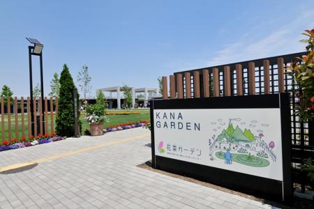 เที่ยวเมืองฮิราสึกะและโออิโสะ ชมดอกกุหลาบแห่งฤดูใบไม้ร่วง และธรรมชาติอันงดงามของโชนัน