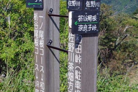 Tochiya One Ridge Hiking Course (Mt. Jinba Climbing)
