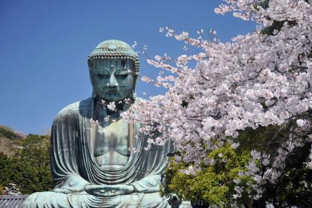Kotoku-in / Grand Bouddha de Kamakura