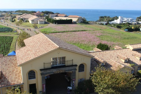Nagai Seaside Park - Soleil Hill