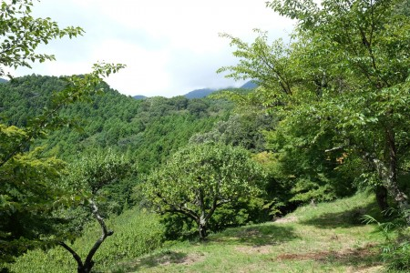 Mont Hinatayama
