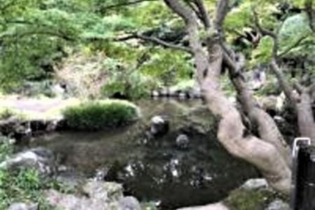 Không gian xanh Takasuna・Shouraian