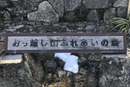 옷코시야마 후레아이노숲
