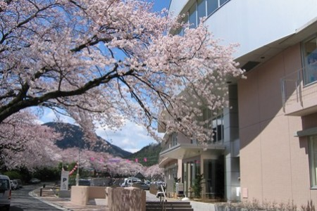 Yamakita machi Health and welfare center Sakurano yu(cherry blossoms)