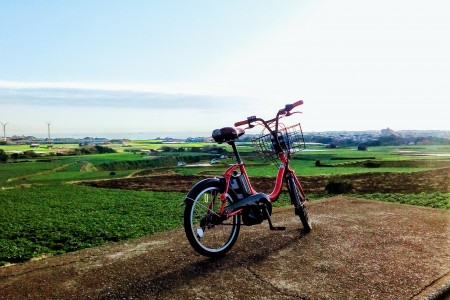 Visit the uninhabited island, Sarushima in Tokyo bay, and ride a bicycle around Miura Peninsula