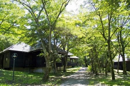 芦之湖露营村