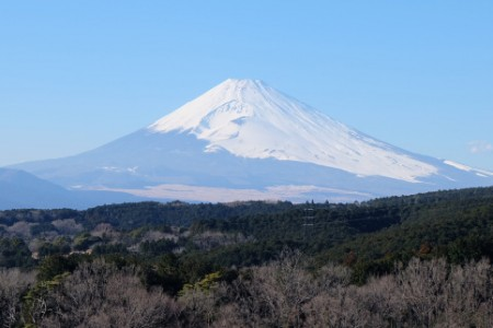 Mishima Sky-walk