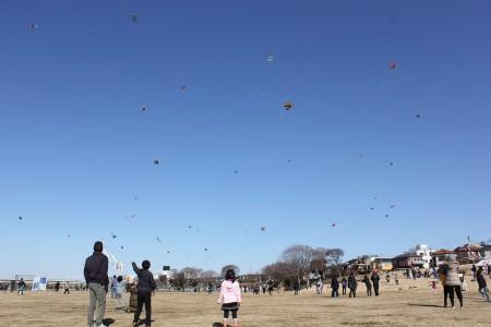 Ebina Kite Festival