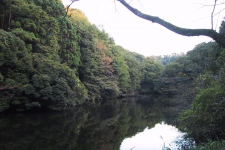 散在ガ池森林公園