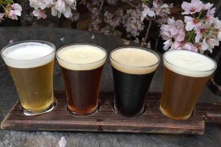 湘南啤酒(熊澤釀酒廠)