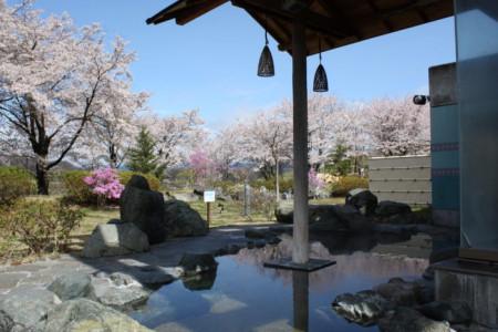 Suối nước nóng Fujino Yamanami