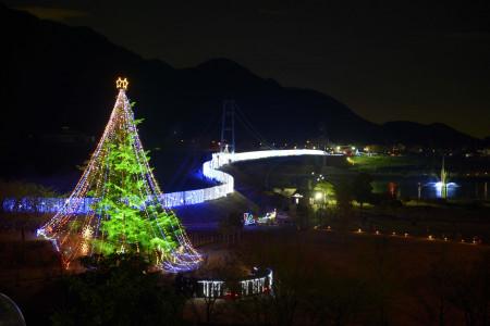 宫濑圣诞树