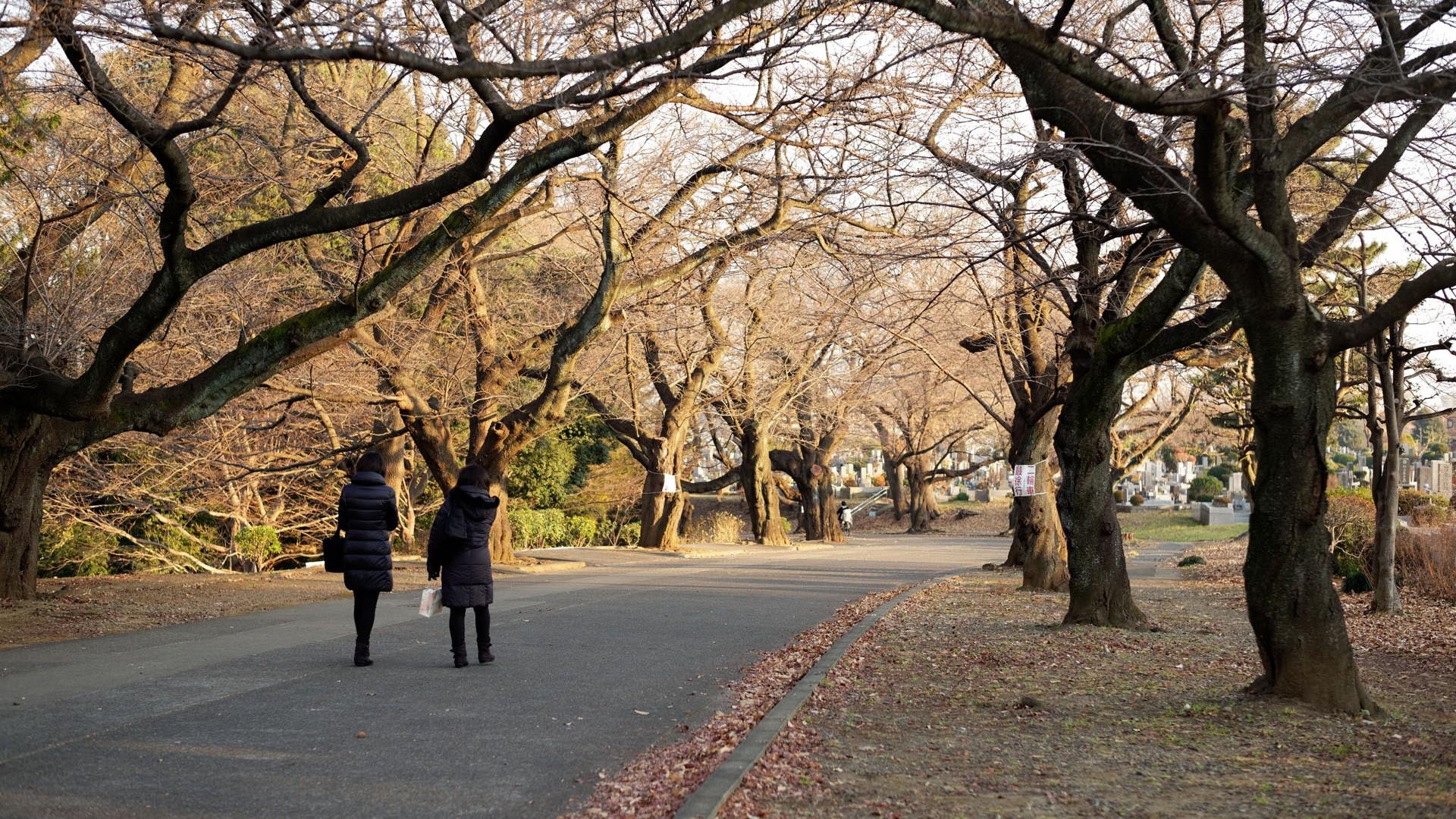 미도리가오카레이엔 공원