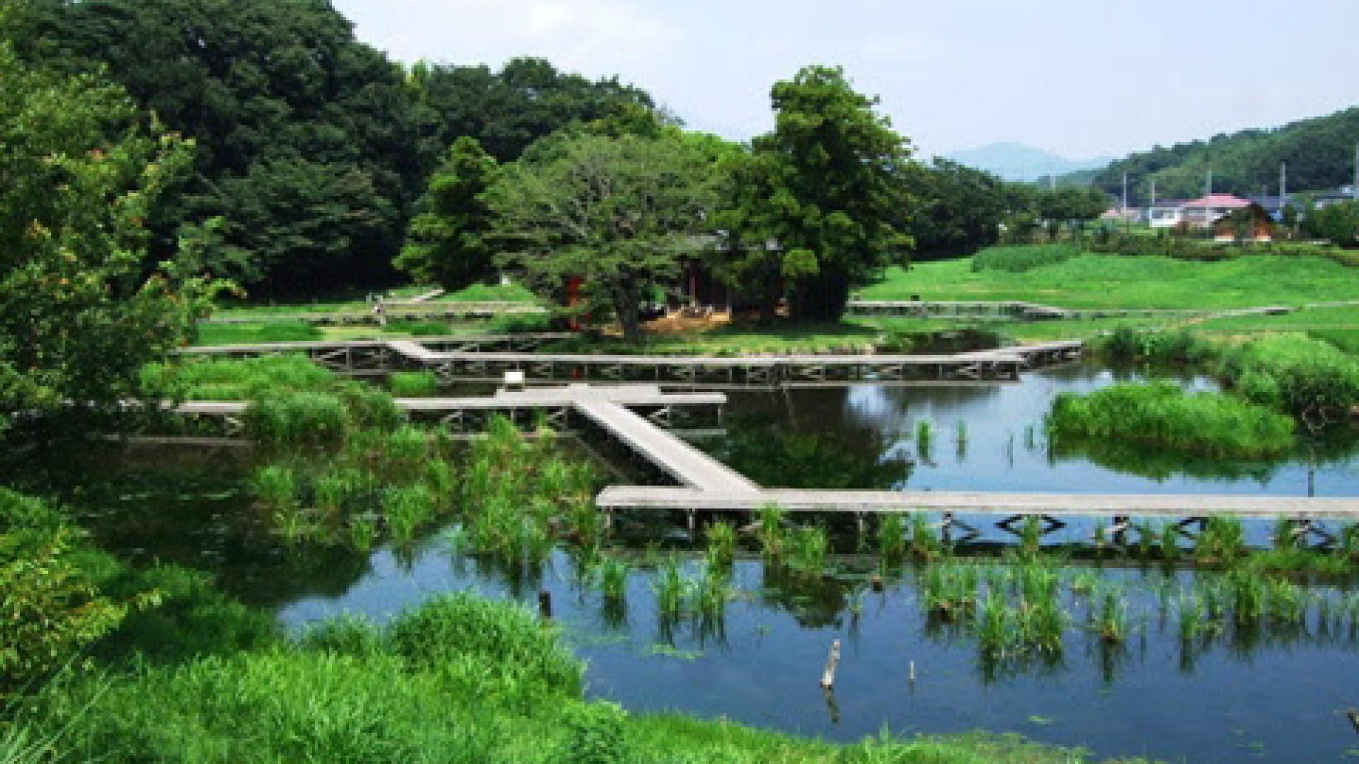 严岛湿生公园