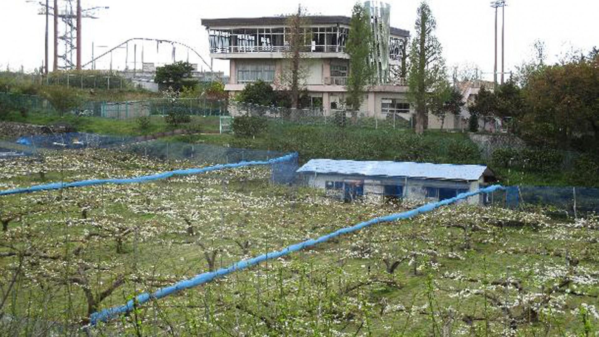 가와사키시 농업 기술 지원 센터
