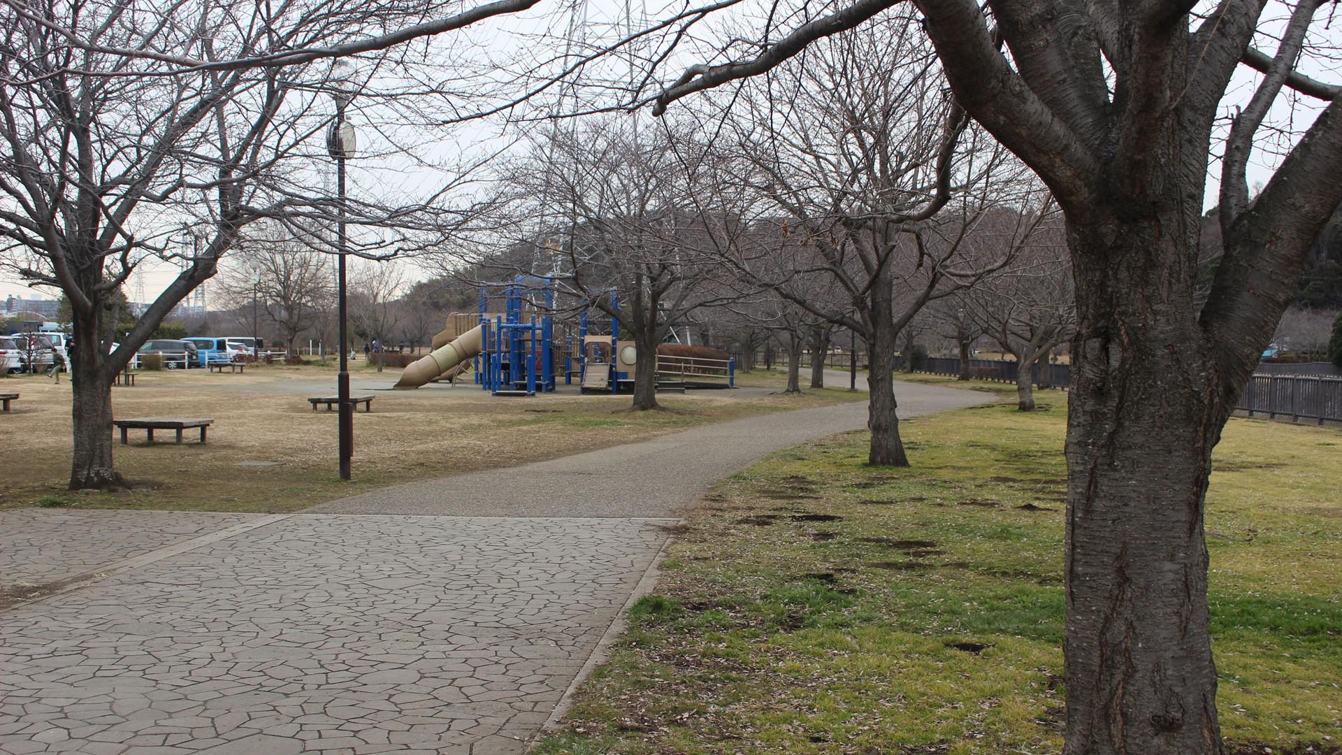 สวนฮิคิจิงะวะ ชินซุย