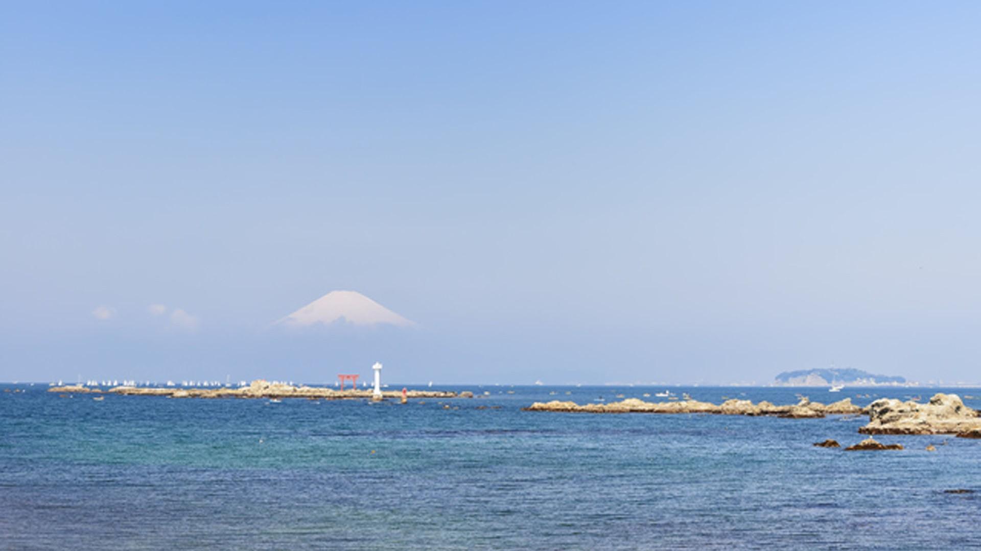 葉山・江の島クルージング