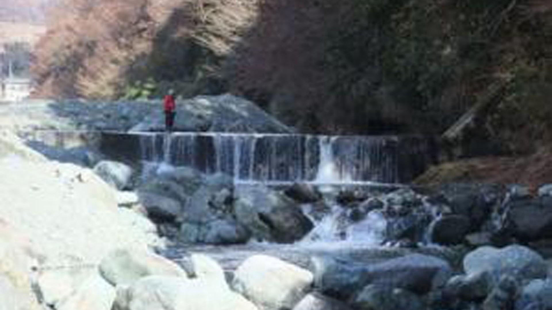 Câu cá hồi tại dòng nước trong ở Yadoriki