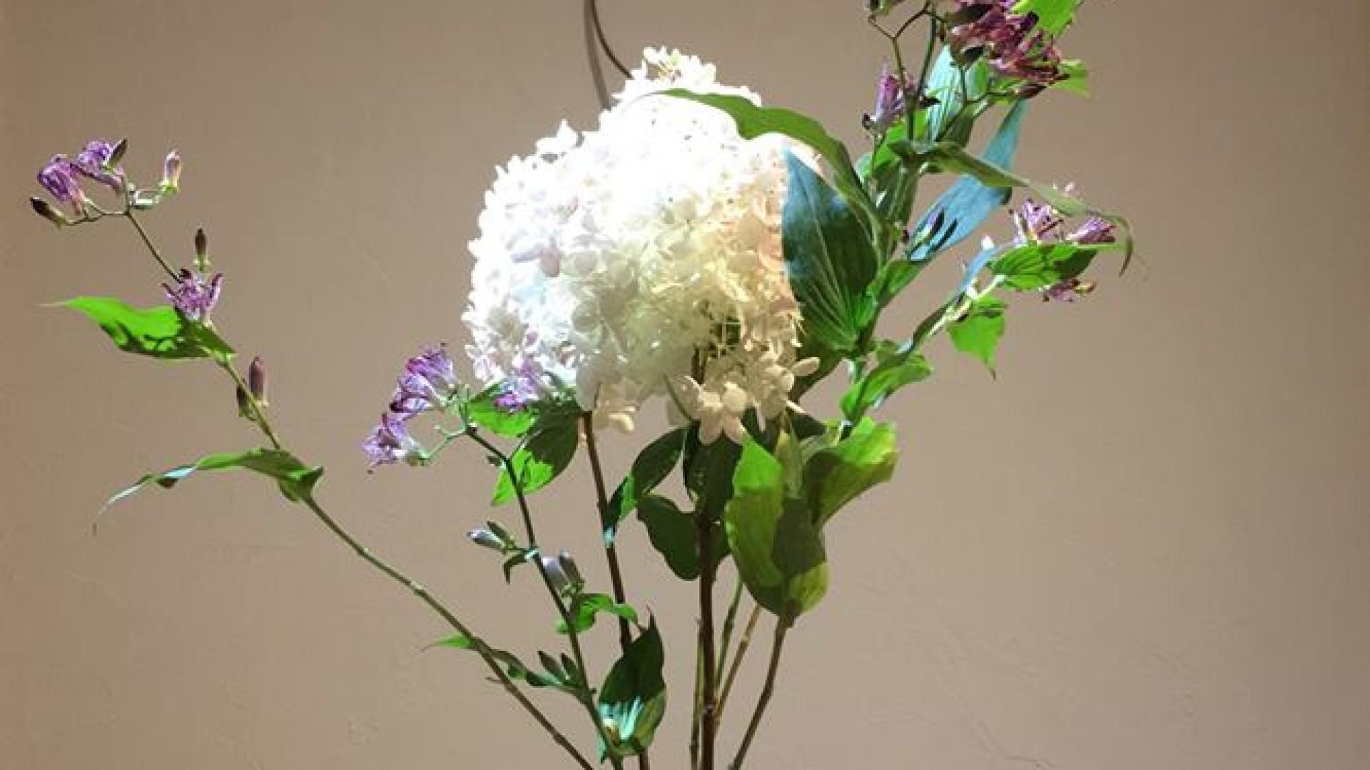 Ohana DE Ohanashi Japanisches Blumenarrangement Sogetsu-ryu Ujebana Studio