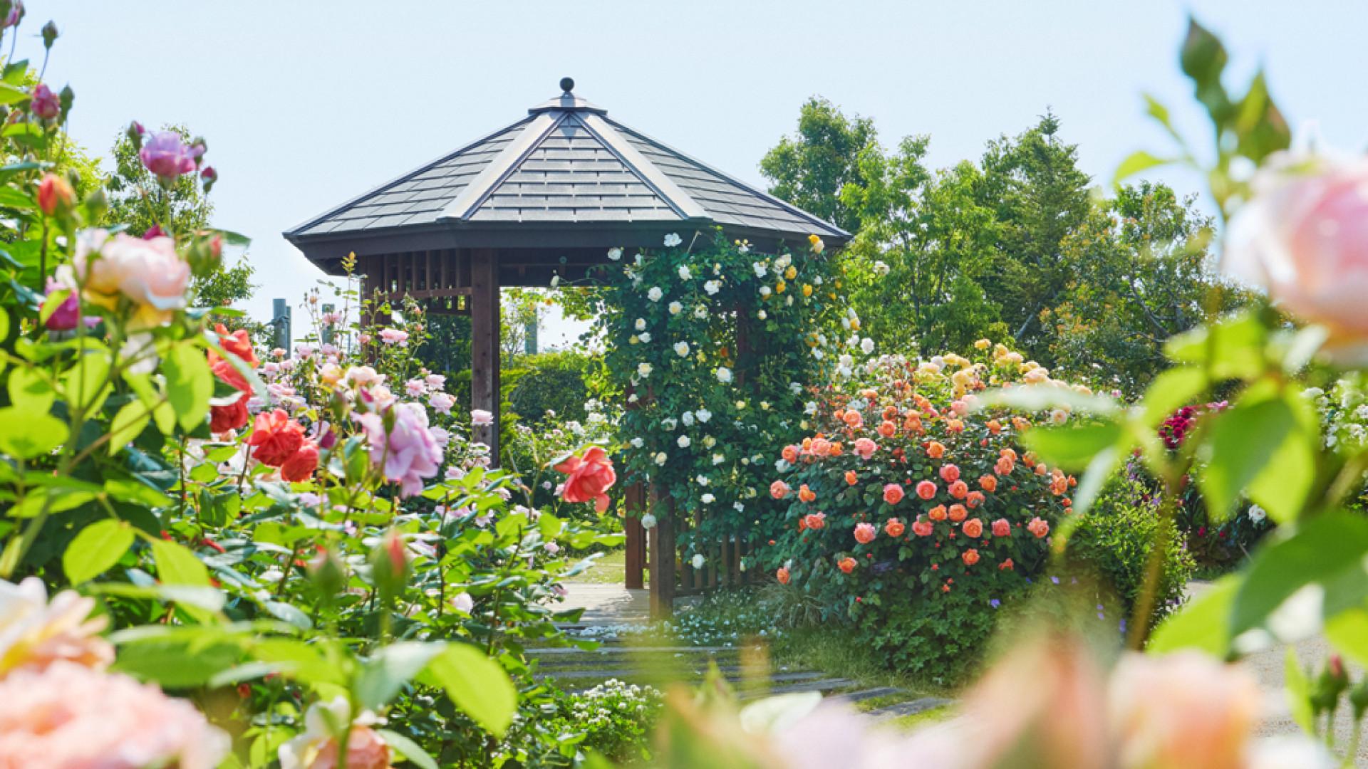 ศูนย์ดอกไม้และพรรณไม้แห่งจังหวัดคะนะงะวะ, สวนคะนะ (ผักและดอกไม้)