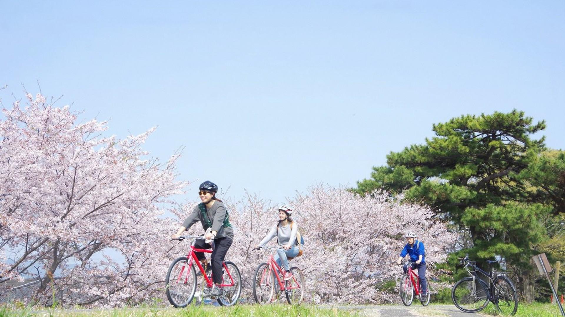 小田原サイクリングツアー