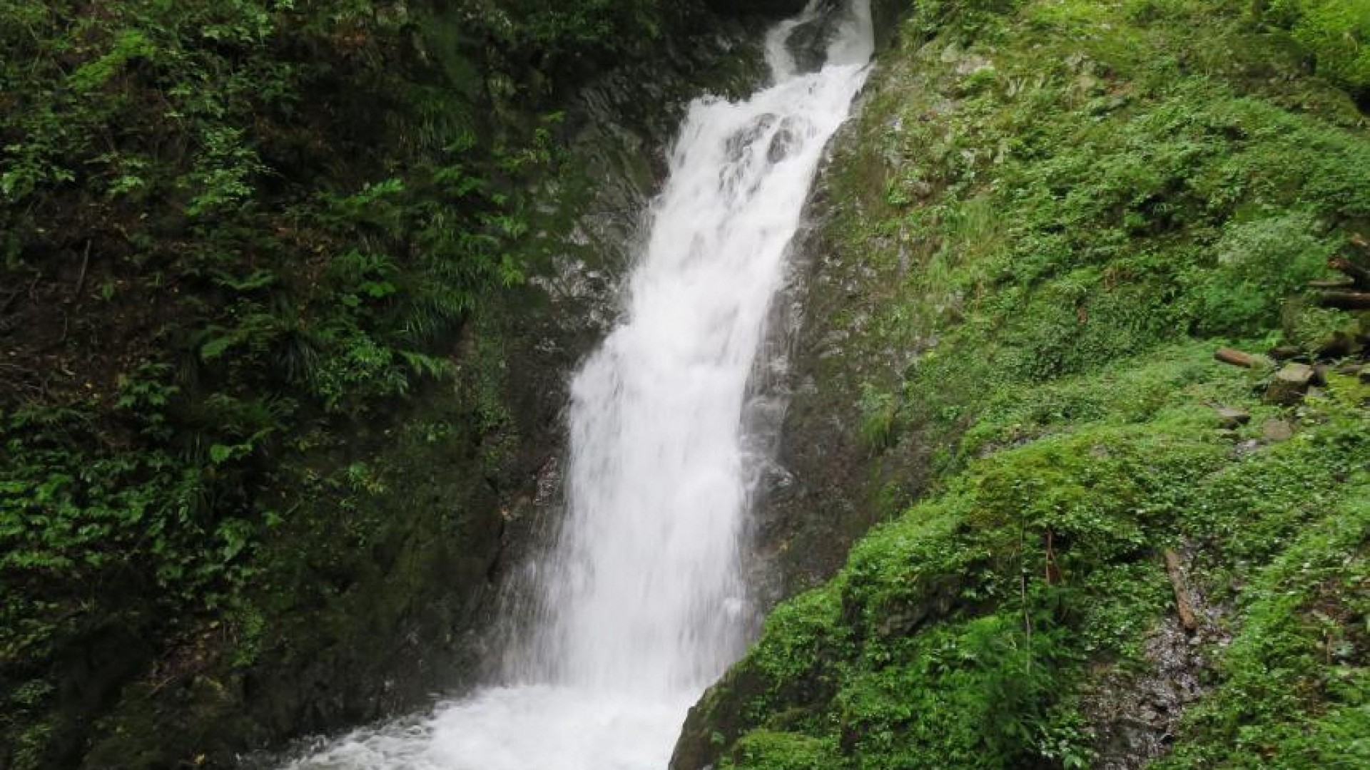 Higeso Fall (bearded monk's fall)