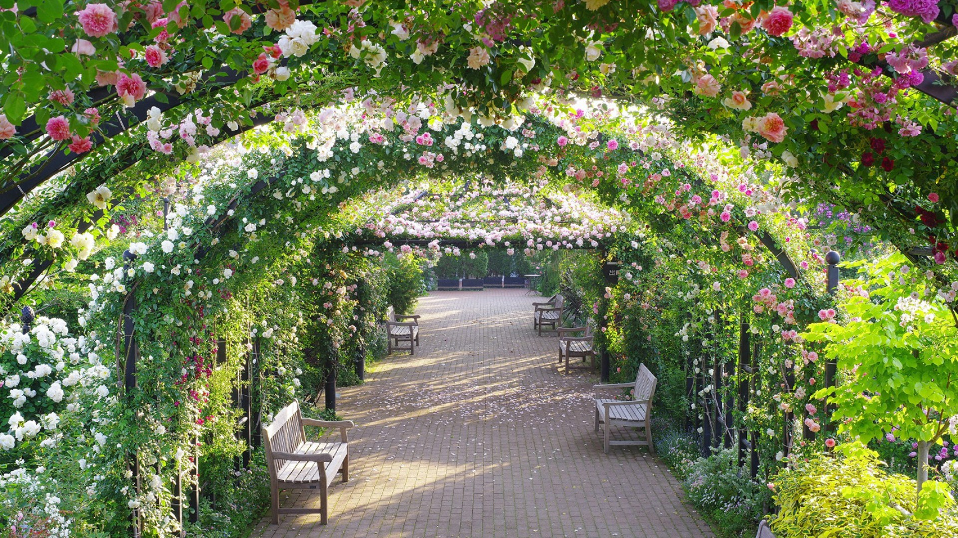 Jardin anglais de Yokohama