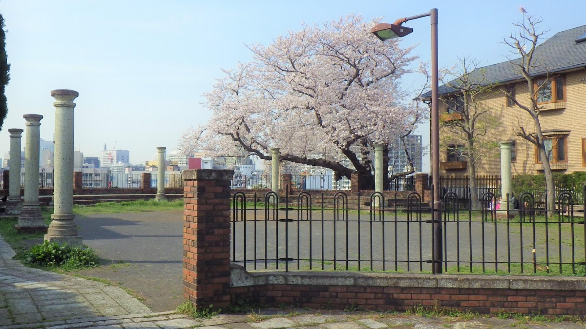 Yokohama Hyakudan Park